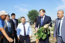 Как развивается отечественный бизнес в районах Жамбылской области