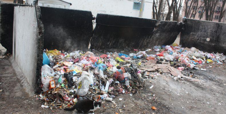 Газета «Литер»: как очистить Тараз от мусора?