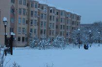 Разница в температуре погоды в Таразе и Шымкенте составила 24 градуса