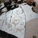 ИСТОРИЯ РЯДОМ: В 20 км от Тараза когда-то водились тигры
